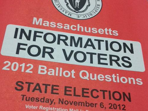 Ballot Question Guide Includes Web Address For Spoof Pro-Medical Marijuana Site