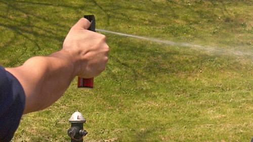Bill To Make Buying Pepper Spray, Mace Easier In Mass. Stuck In Legislative Limbo