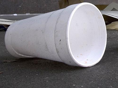Brookline Styrofoam & Plastic Bag Ban Going Into Effect On Sunday