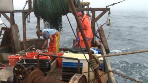 Fishing Industry At Risk Of Disappearing In New England