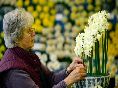 Gardening With Gutner: Planting Fall Bulbs