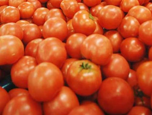 Gardening With Gutner: Tomato Time