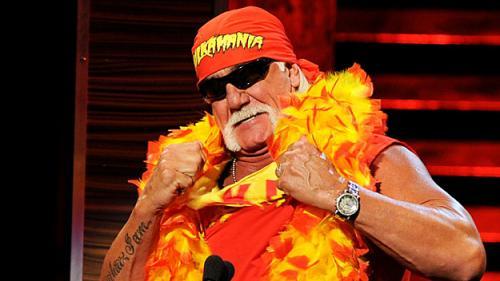 Hulk Hogan Pledges Allegiance To Patriots