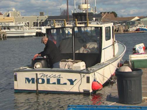 New England Fishermen Brace For Drastic New Catch Limits